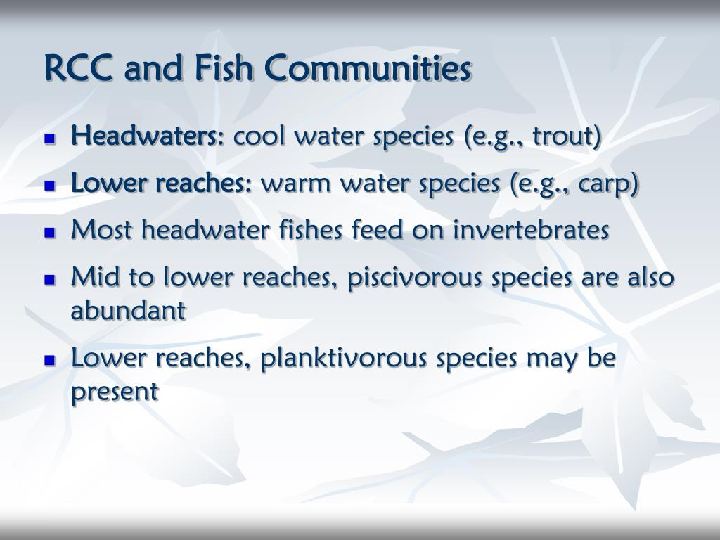 RCC and Fish Communities