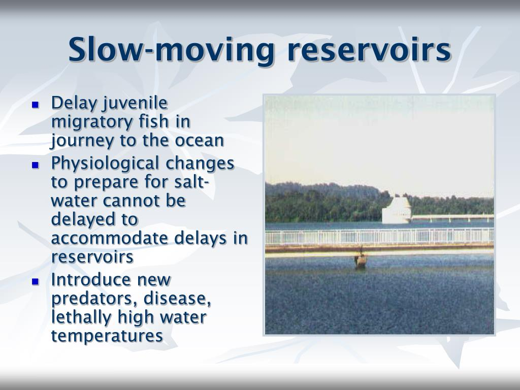 Slow-moving reservoirs