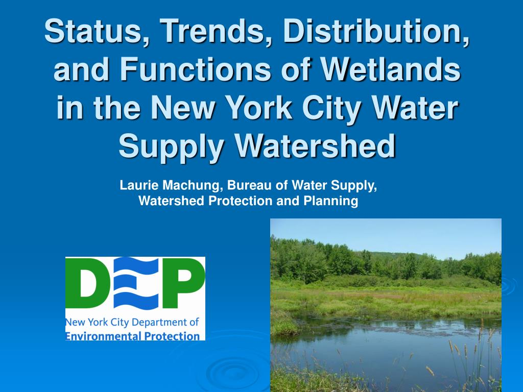 status trends distribution and functions of wetlands in the new york city water supply watershed l.
