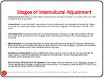 stages of intercultural adjustment