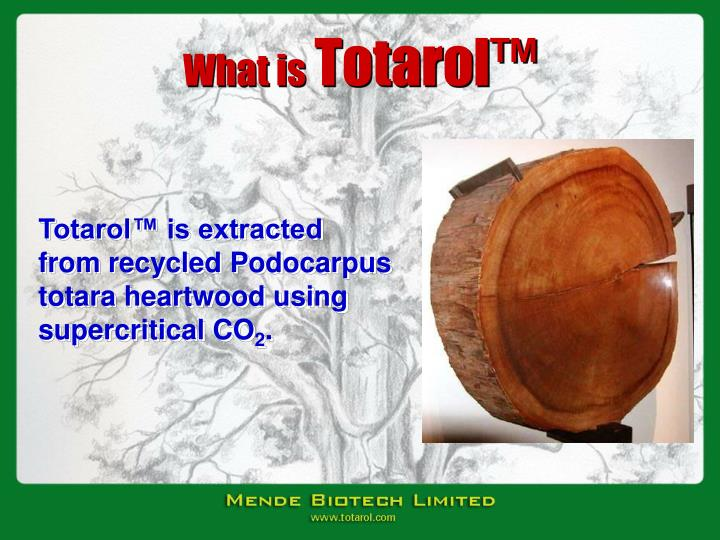 What is totarol