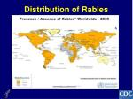 distribution of rabies