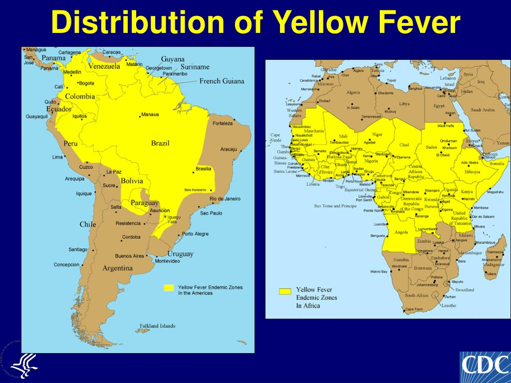 Distribution of Yellow Fever