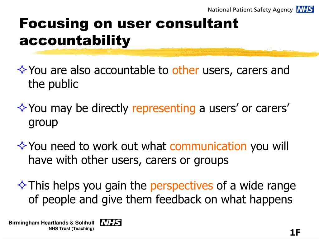 Focusing on user consultant accountability