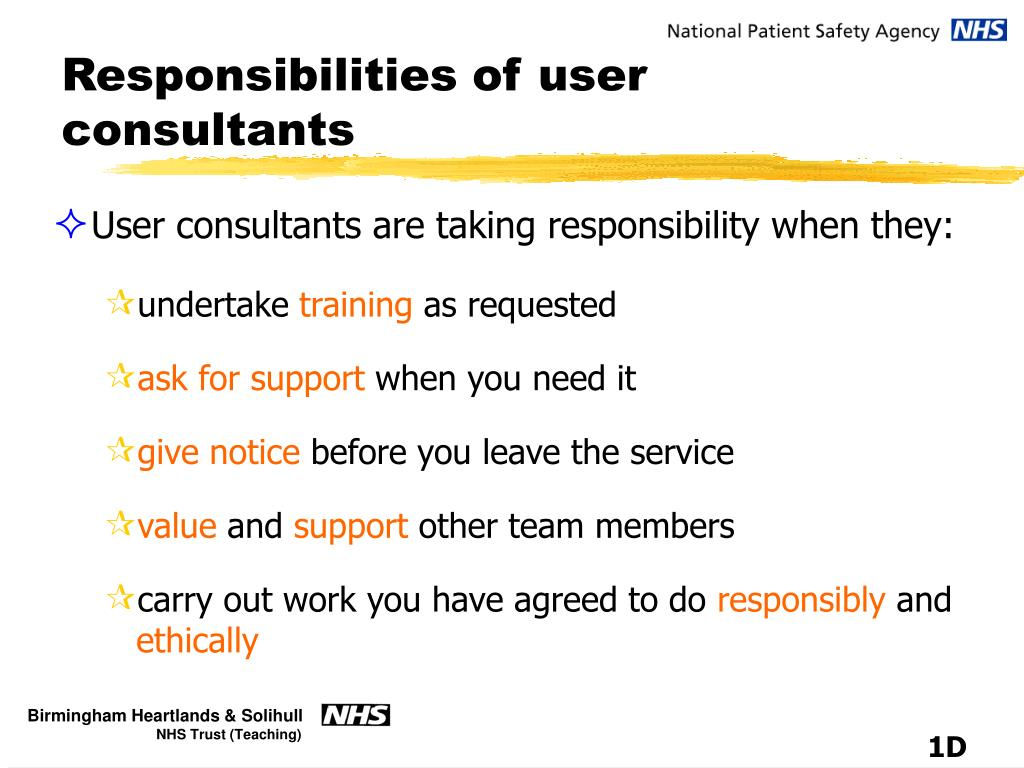 Responsibilities of user consultants