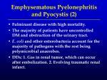 emphysematous pyelonephritis and pyocystis 2