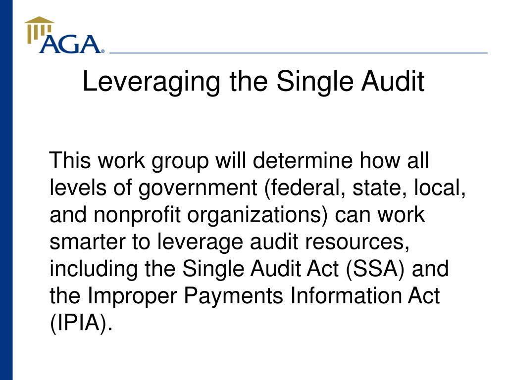 Leveraging the Single Audit