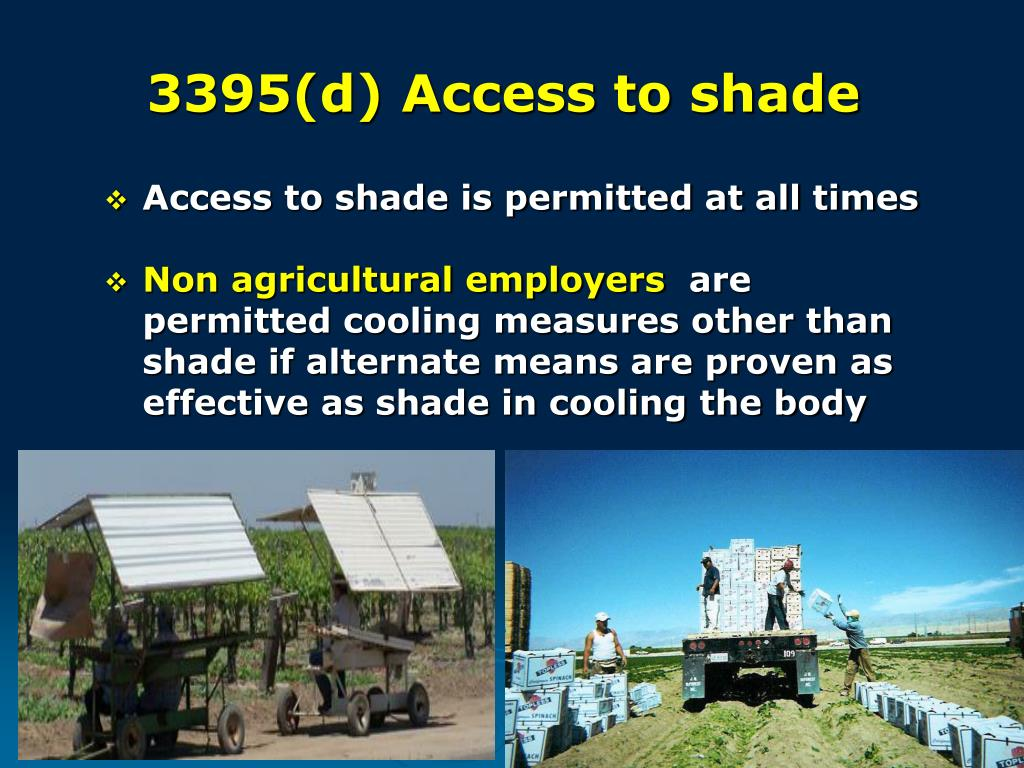 3395(d) Access to shade
