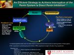 an efficient strategy to achieve interruption of the renin system is direct renin inhibition 1 3
