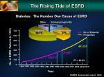 the rising tide of esrd
