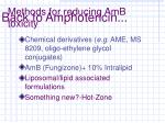 methods for reducing amb toxicity