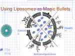 using liposomes as magic bullets