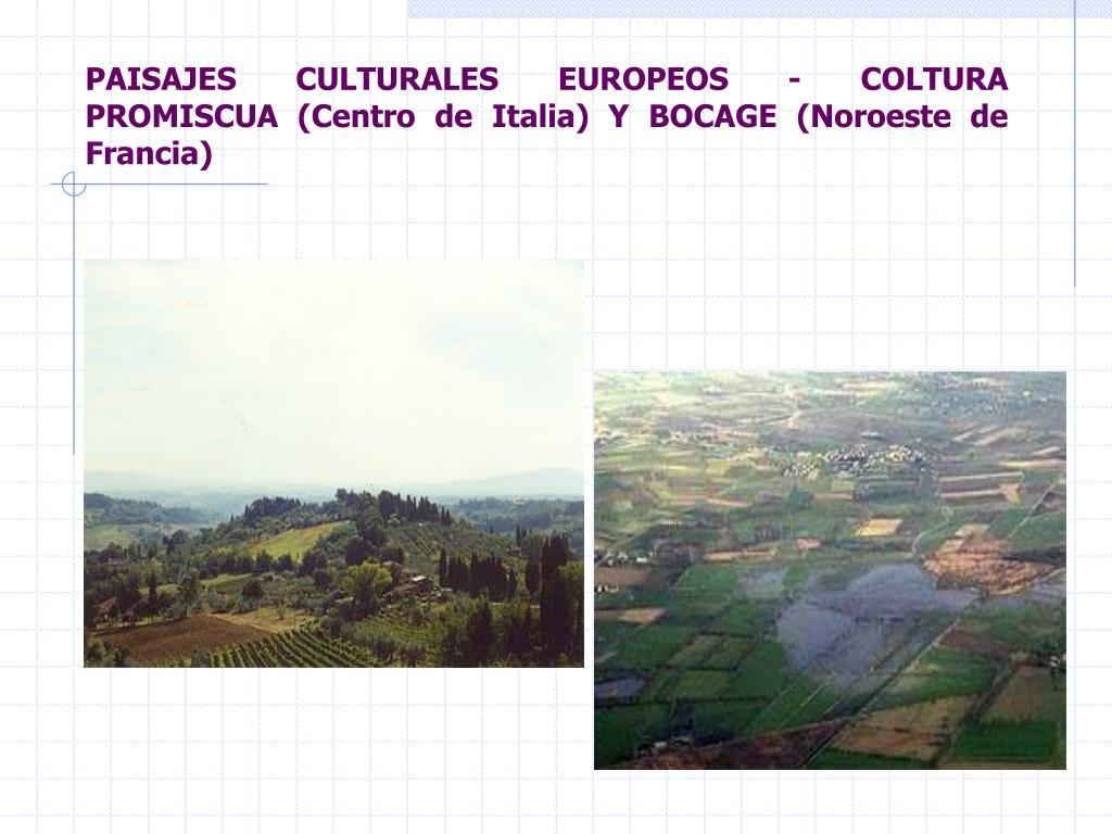 PAISAJES CULTURALES EUROPEOS - COLTURA PROMISCUA (Centro de Italia) Y BOCAGE (Noroeste de Francia)