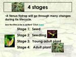 4 stages49