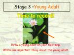 stage 3 young adult65