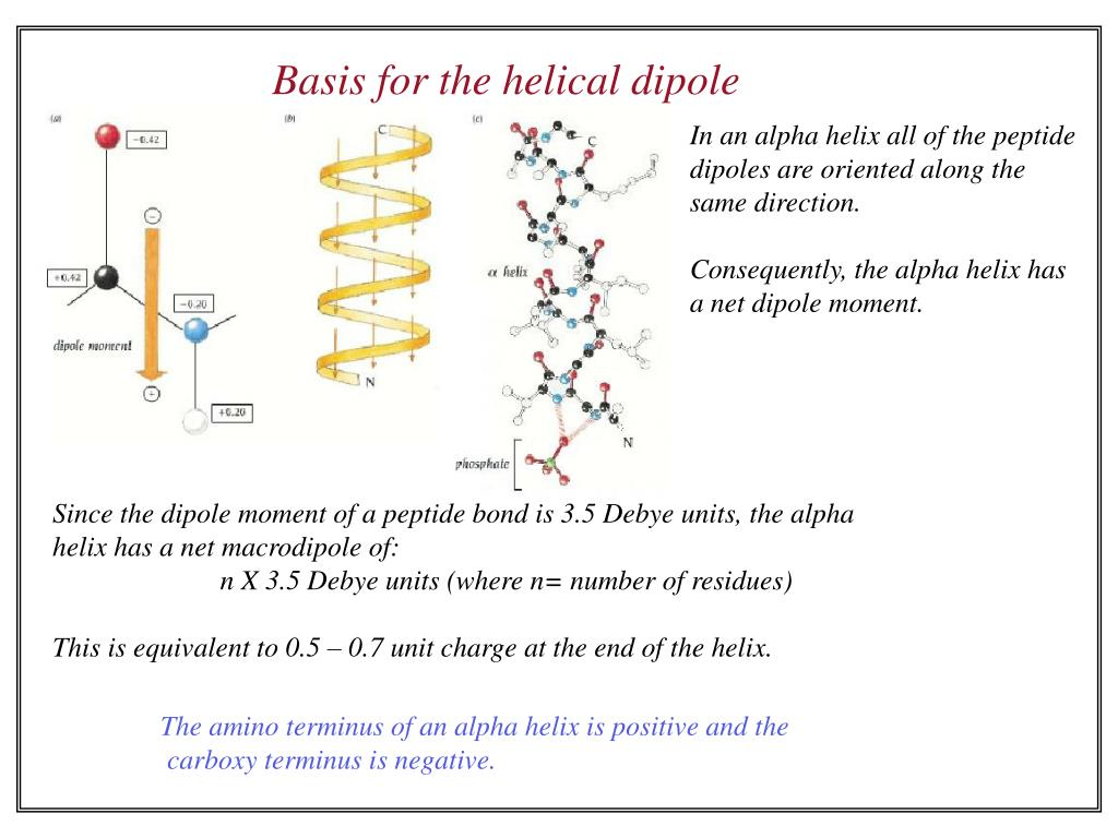Basis for the helical dipole
