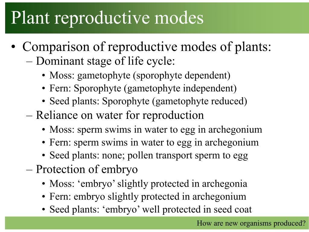 plant reproductive modes l.