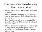 four evolutionary trends among flowers are evident