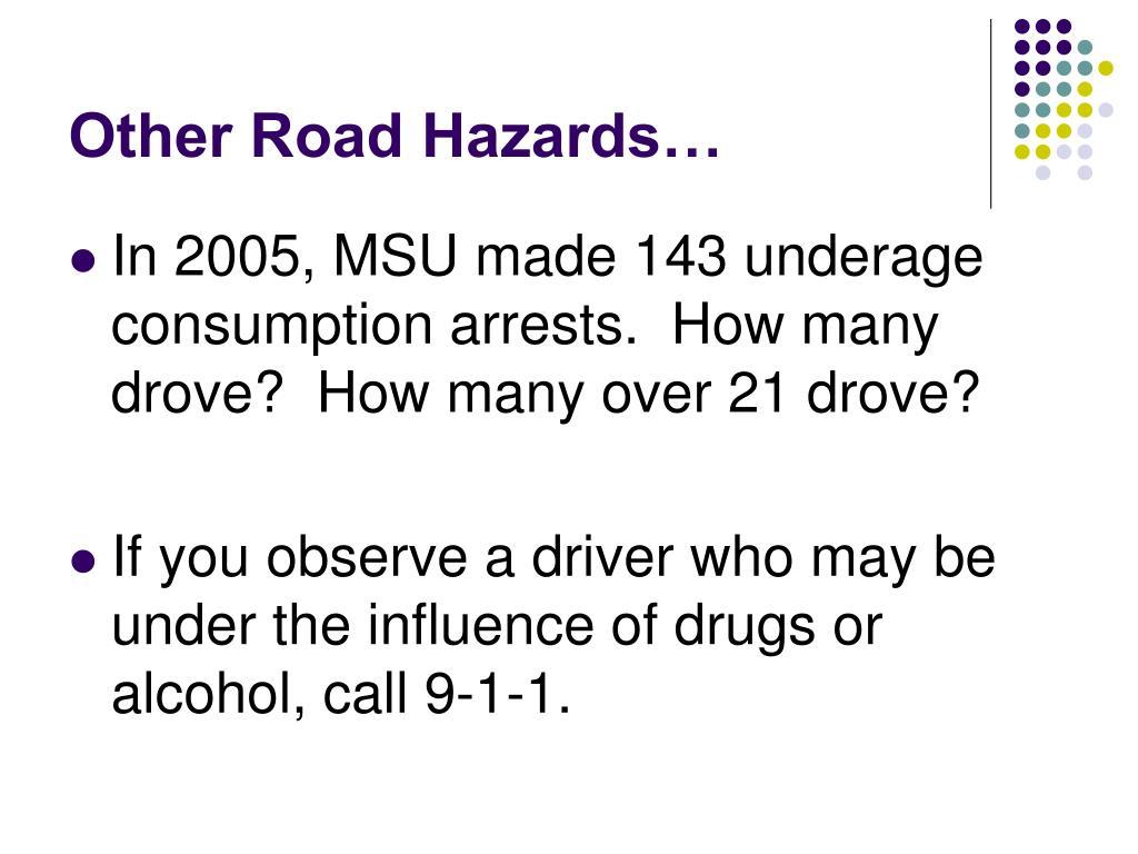 Other Road Hazards…