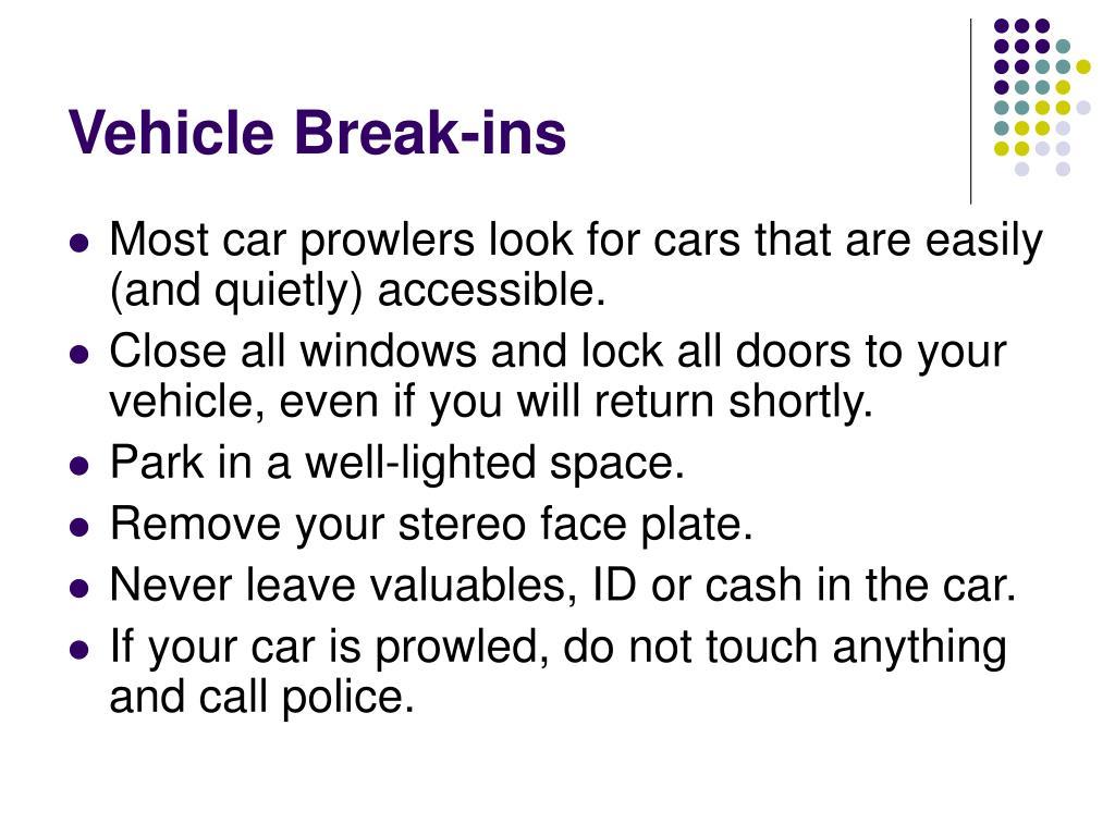 Vehicle Break-ins