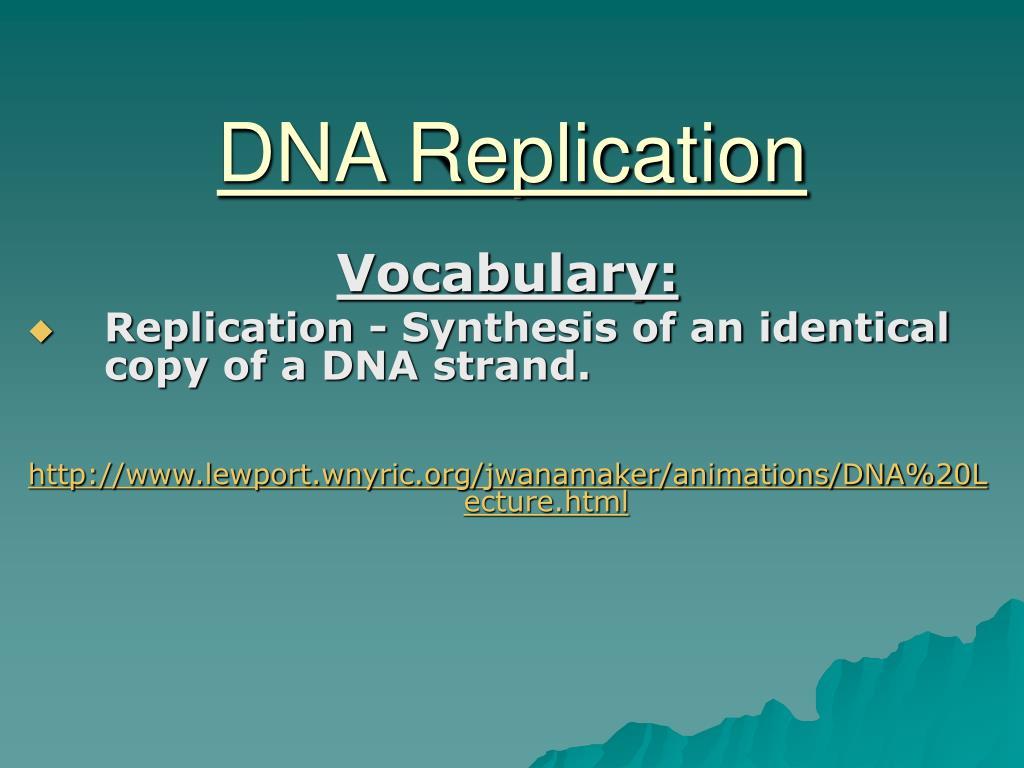 dna replication l.