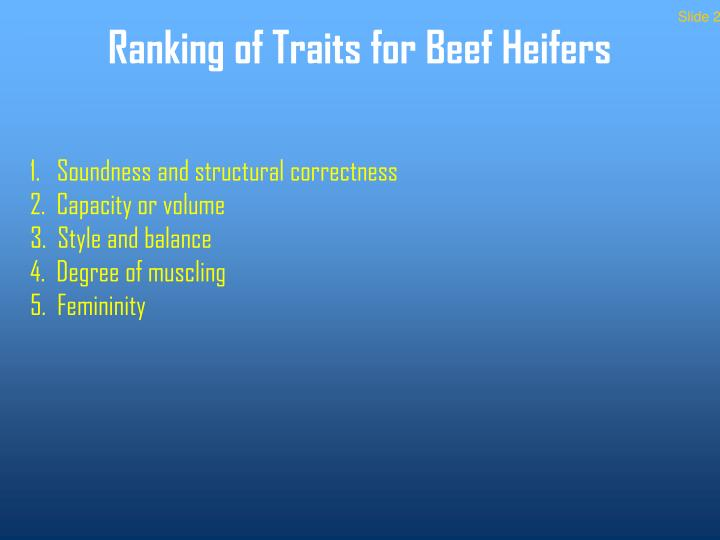 Ranking of traits for beef heifers