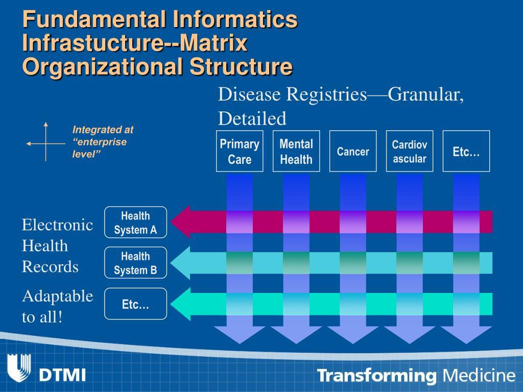 Fundamental Informatics Infrastucture--Matrix Organizational Structure