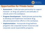 opportunities for private sector