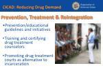 p revention treatment reintegration