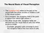 the neural basis of visual perception38