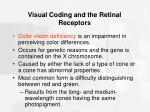 visual coding and the retinal receptors29