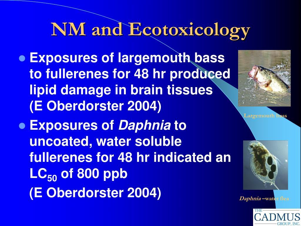 NM and Ecotoxicology