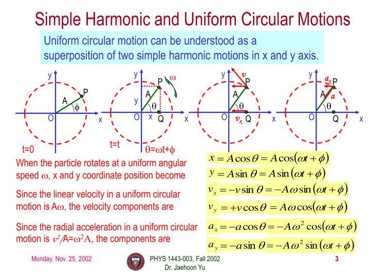 Simple harmonic and uniform circular motions