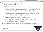 components of tier 3