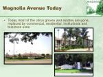 magnolia avenue today4