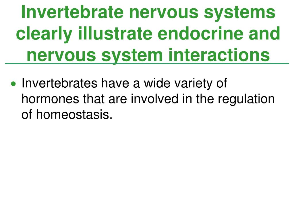 Invertebrate nervous systems clearly illustrate endocrine and nervous system interactions