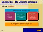 backing up the ultimate safeguard