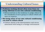 understanding cultural issues