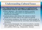 understanding cultural issues33
