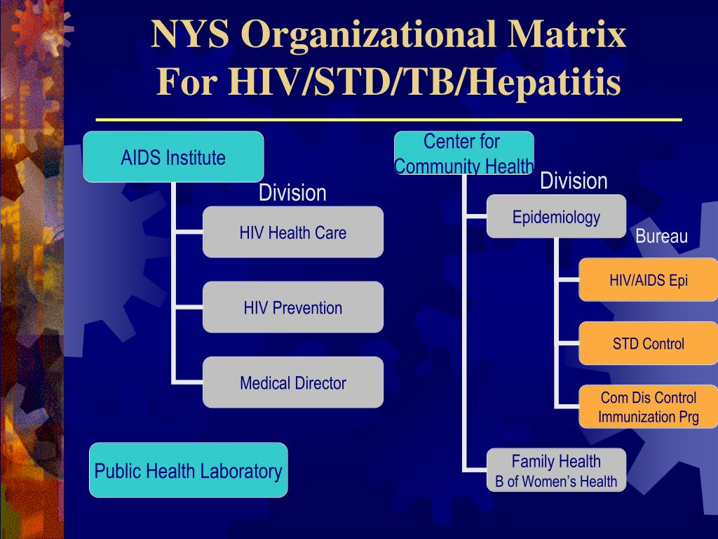 NYS Organizational Matrix
