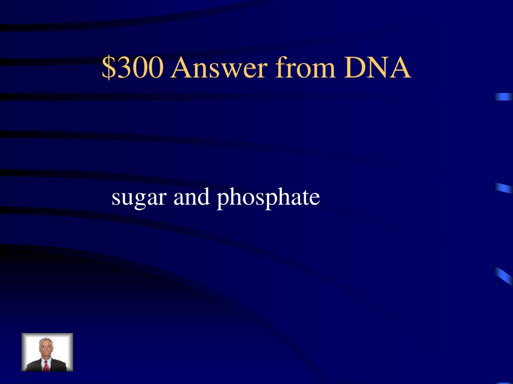 $300 Answer from DNA