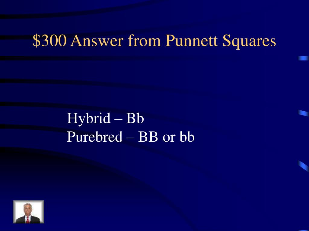 $300 Answer from Punnett Squares