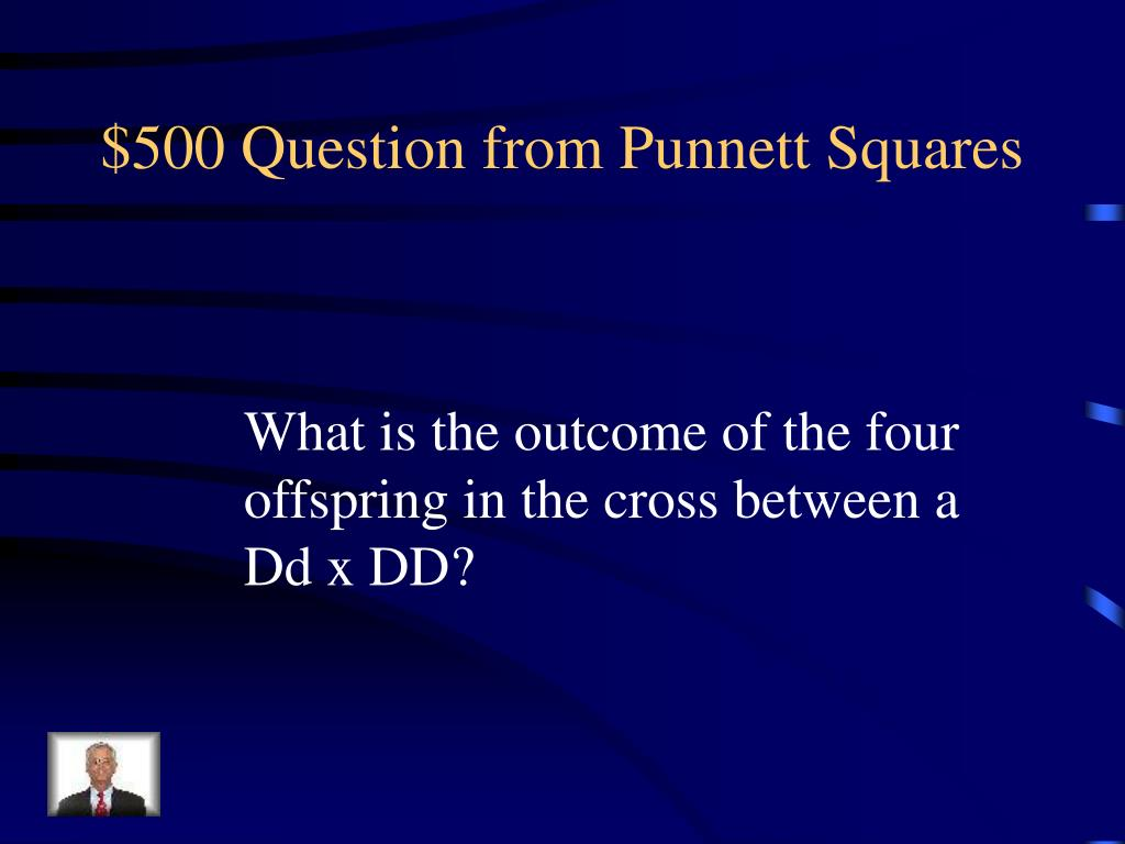 $500 Question from Punnett Squares