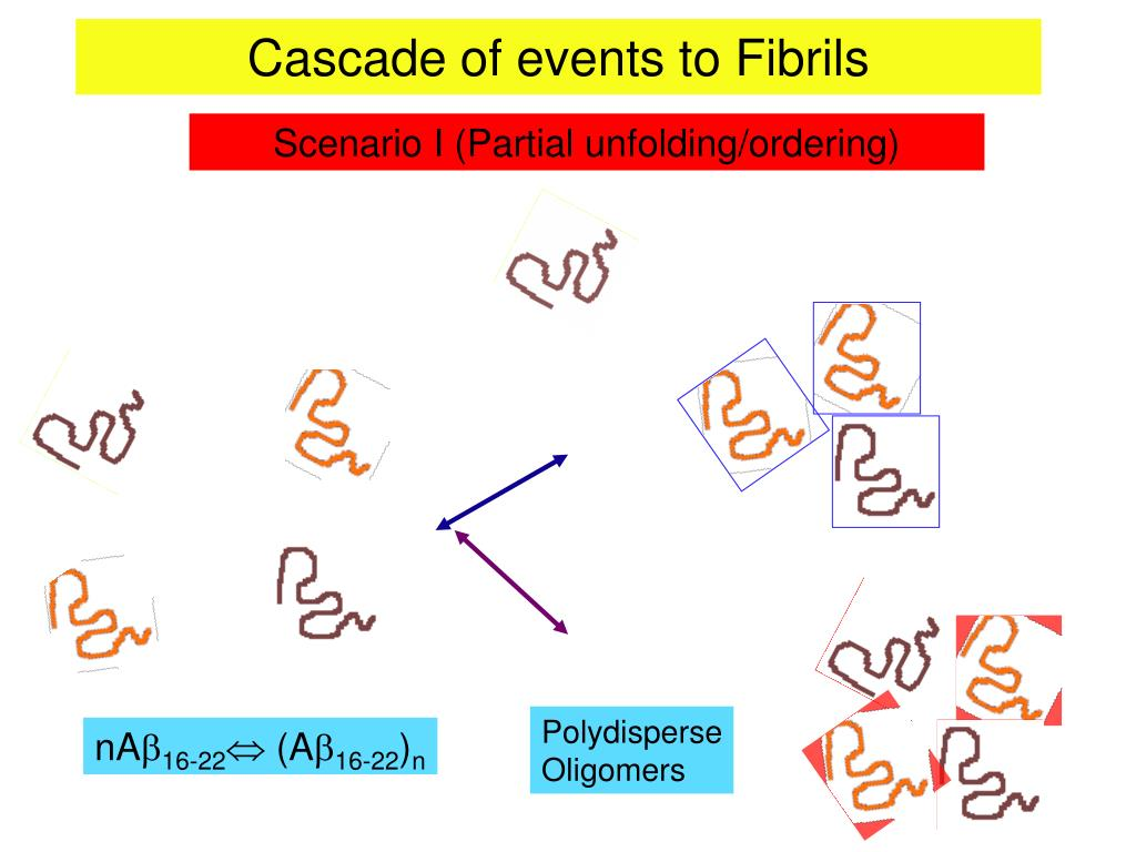 Cascade of events to Fibrils