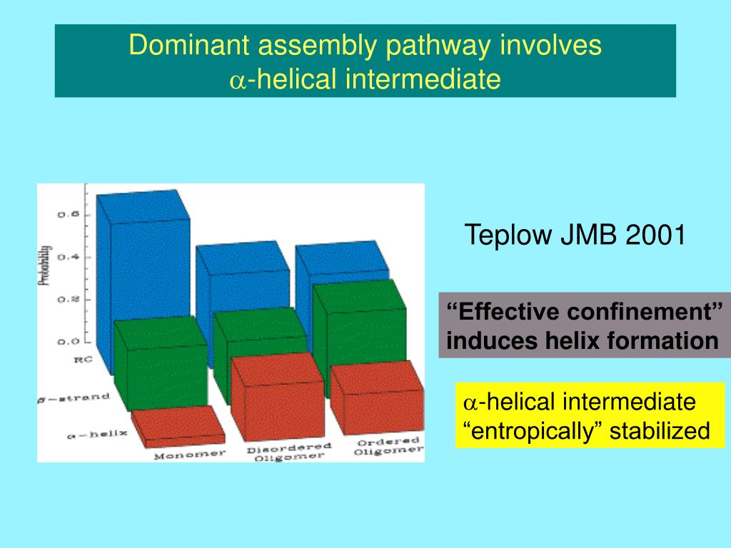 Dominant assembly pathway involves