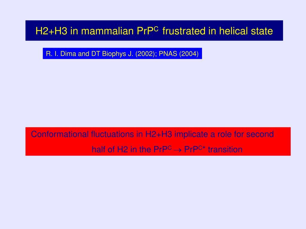 H2+H3 in mammalian PrP