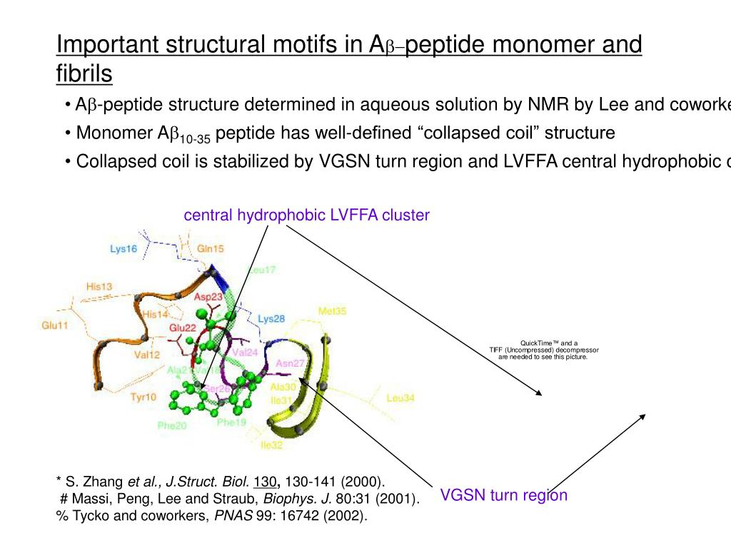 Important structural motifs in A