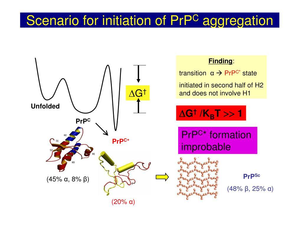 Scenario for initiation of PrP