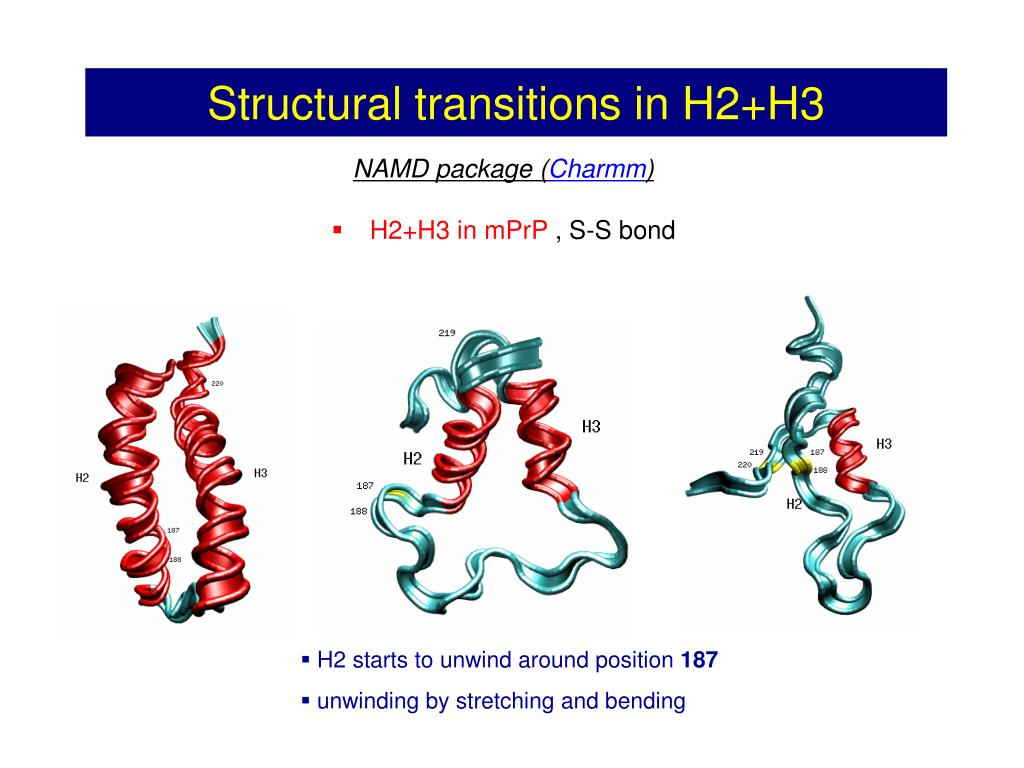 Structural transitions in H2+H3