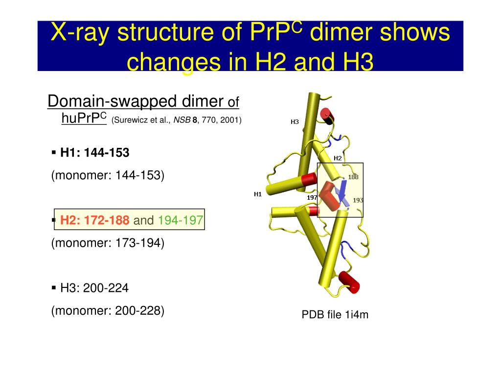 X-ray structure of PrP